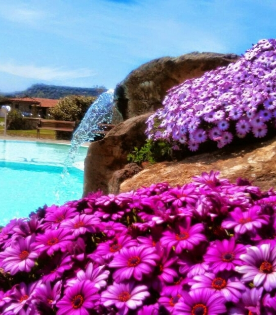 cascata_e_piscina_e_dimorphoteca_primavera.jpg
