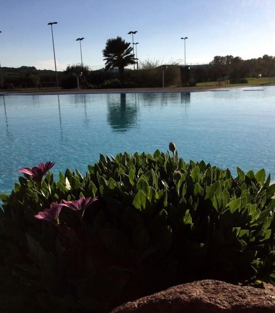 piscina_e_dimorphoteca_de_palma_2.jpg