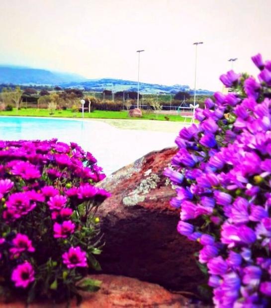 piscina_e_dimorphoteca_vista_monti.jpg