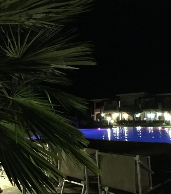 struttura_1_prospettiva_palma_piscina_viola_notte.jpg